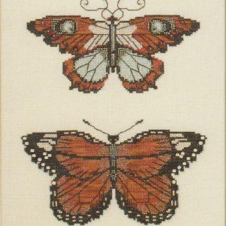 NC105 Butterflies of Gold